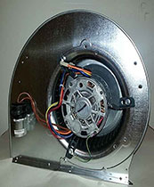 Blower Motor w/Cage